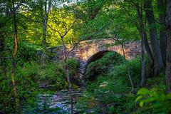 Bridge to Spring (Jeffrey Friedkin) Tags: park bridge light newyork outdoors spring sleepyhollow rockefellerstatepark