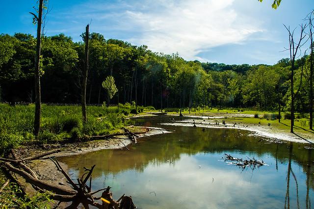 Leonard Springs Nature Park - May 18, 2015