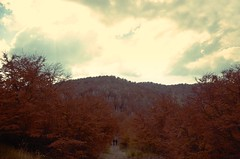 Viajeros (J.J.Evan) Tags: autumn red sky patagonia naturaleza mountains nature argentina leaves sunrise hojas rojo south hill amanecer cerro cielo otto otoño sur bariloche montañas traveler viajeros