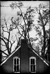 a hut with horns, and eyes (nzosimova) Tags: city trees bw house building downtown outdoor horns denver fivepoints oldbuilding
