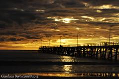 DSC_0393 (bertu89) Tags: sunset wild sun holiday beach landscape photography photo nikon tramonto australia natura adelaide southaustralia spiaggia paesaggio 18105 d5000 workingholidayvisa bertu89