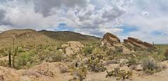0U1A6810 Saguaro National Park - Rincon Mountains - Javelina Rocks (colinLmiller) Tags: arizona mountains tucson nps east np nationalparkservice saguaronationalpark rincon doi 2016 unitedstatesdepartmentoftheinterior