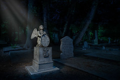 Angel in the light (xipevideo) Tags: girl cemetery graveyard angel night photoshop dark wings nikon day flash gothic denhaag 20mm thehague mystic lightroom angelstatue octa lastolite d600 daytonight strobist oudeikenduinen