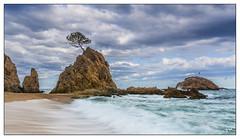Mar menuda (tonics70) Tags: mar pi roca cala tossa roques menuda nbols