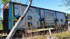 RTD (BLACK VOMIT) Tags: car train graffiti box whole crew return boxcar dust freight rtd