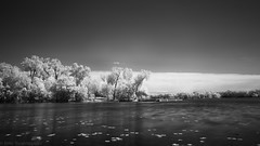 Cedar Lake 201605161542gmt-6 (scurvy_knaves) Tags: minnesota spring unitedstates minneapolis msp infrared fujifilm cedarlake hoyar72 chainoflakes xpro1 fujinonxf18mmf2r
