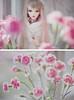 Amanda (_Rippie_) Tags: pink flowers girl doll bjd fairyland mirwen feeple feeple60
