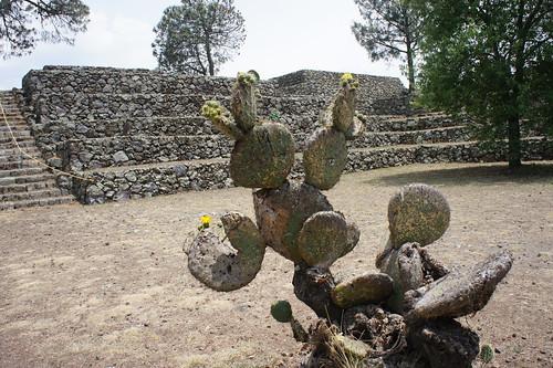 Cantona Ruins, Puebla, Mexico