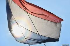2016-03 Je zou de vlag uitsteken als het mooi weer is (Oostvoorne/NL) (About Pixels) Tags: holland netherlands museum wind flag nederland future land nl agenda oostvoorne zon maasvlakte meteo specials maart zuidholland vlag 0313 2016 voorne voorneputten collecties nikond7200 mnd03 lenteseizoen