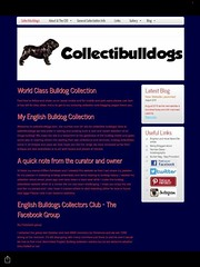Coming soon a brand new www.collectibulldogs.com #advert #advertise #lovebulldogs (eiffion.ashdown78) Tags: advert advertise lovebulldogs