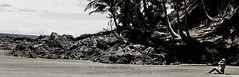 By Herself in the Paradise (Mark Photography 2017) Tags: life lighting camera travel light panorama plant tree beach girl rock horizontal stone skyline female composition race point landscape photography coast photo still sand shoot exterior shot natural general image action outdoor earth candid crafts arts environmental style gear palm blond land vegetation format material framing activity ethnic setting seated effect orientation sunbathing humanbeing gender genre compact ethnicity treatment caucasian greatape homosapiens desaturating flickryes womanartscraftsphotographyworkflowgeocodedyesflickryestreatmentimagetypedesaturatingsettingskylineexterioroutdoorphotogenrestylecandidshottravelgenerallifelandscapegearstillcameracompactpointshootorientationlightingnatura geocodedyes homininclade