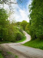 v19 tema vg (Castorian) Tags: road summer vag vg windling fotosondag fotosndag fs160515