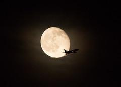 (edo787ak) Tags: moon japan airplane d500