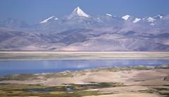 Ice peaks and desert sand dunes along the river Yarlung Tsangpo, Tibet 2015 (reurinkjan) Tags: desert grassland sanddunes tar 2015 brahmaputra tibetautonomousregion tsang  tibetanplateaubtogang tibet himalayamountains natureofphenomenachoskyidbyings landscapesceneryrichuyulljongsrichuynjong naturerangbyungrangjung landscapepictureyulljongsrimoynjongrimo himalaya landscapeyulljongsynjong himalayamtrangerigyhimalaya drongpacounty earthandwaternaturalenvironmentsachu himalayasrigangchen tibetanlandscapepicture janreurink  riveryarlungtsangpo