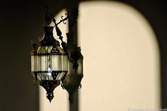 Lampio Solitrio (Biolchini) Tags: lamp lampio