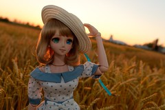 --  Searching  (Mei-) Tags: dd dollfie volks beatrice kaede dollfiedream takagaki