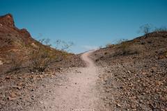 5R6K2944 (ATeshima) Tags: arizona nature havasu