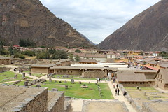 IMG_6715 (University of Pennsylvania Alumni) Tags: peru machu picchu cuzco llama