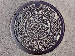 Kokawa Wakayama, manhole cover  (MRSY) Tags: kokawa wakayama japan manhole flower