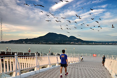 Fly in the morning (szintzhen) Tags: sky cloud mountain river pigeons taiwan      tamsui     newtaipeicity