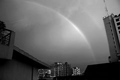 Monochrome Rainbow (Shadman241091) Tags: monochrome rainbow bnw blackandwhite buildings tree tower terrace chittagong bangladesh canon
