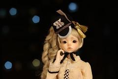 IMG_8306 (Emma Wolf) Tags: doll bjd customblythe obitsucustom classydoll dimdolllarina mystickids zinnadollmore