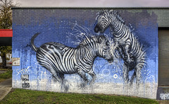 Zebra battle (J-C-M) Tags: street city urban panorama streetart art wall painting graffiti fight artwork paint artistic australia melbourne wallart battle victoria spray inner zebra ropes fighting aerosol stitched maka blo zebras battling footscray makatron