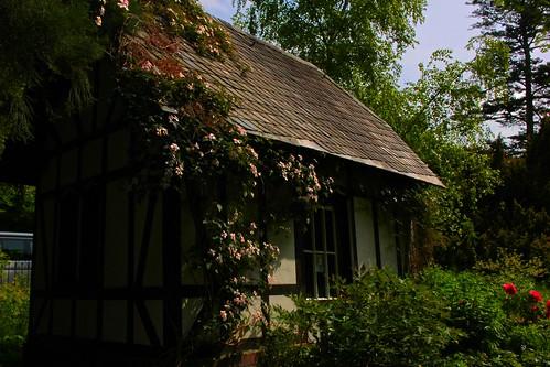 "Alter Botanischer Garten Kiel (2) • <a style=""font-size:0.8em;"" href=""http://www.flickr.com/photos/69570948@N04/18051299300/"" target=""_blank"">View on Flickr</a>"