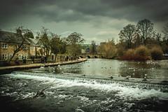 Bakewell. (ian.emerson36) Tags: bridge water birds buildings river wildlife derbyshire ducks bakewell