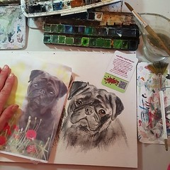 Endlich kommt das Mopsi wieder an... (wandklex Ingrid Heuser freischaffende Künstlerin) Tags: watercolor studio artist workinprogress pug wip m workspace watercolour behindthescenes comission mops puglove custompaint etsyshop etsyseller meetthemaker auftragskunst etsyfinds kunstatelier auftragsmalerei etsygifts wandklex pugsofinstagram uploaded:by=flickstagram pugsofig instagram:venuename=bahnhofratzeburg instagram:venue=51075171 etsyresolution2016 etsyresolutionde instagram:photo=12414120672811441921487357881 pugloversclub pugloversofinsta