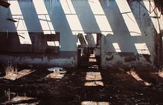 Derelict SIACE Paper Factory, Sicily#1 (Architettura Povera as Arte Povera ( Poor Architec) Tags: art abandoned architecture cat paper concrete ruins industrial factory sicily derelict catania corruption asbestos artepovera fiumefreddo