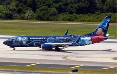 WestJet - C-GWSZ - B737-8CT (Charlie Carroll) Tags: tampa florida tampainternationalairport ktpa