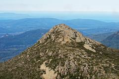 20160424-26-Mt Snowy from Hartz Peak (Roger T Wong) Tags: trek outdoors nationalpark walk australia hike scree tasmania bushwalk iv tramp 2016 canon100f28macro dolerite canonef100mmf28macrousm hartzpeak hartzmountainsnationalpark metabones mtsnowy smartadapter rogertwong sonya7ii sonyilce7m2 sonyalpha7ii