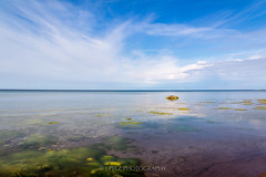 View from the beach (J. Pelz) Tags: blue sea sky nature canon colorful sweden horizon gotland