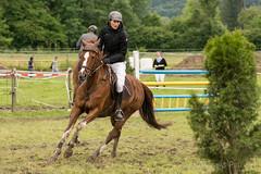 DSC02499_s (AndiP66) Tags: gelb martinameyer grueb wolhusen luzern concourshippique springen thrigen 2016 11juni2016 juni pferd horse schweiz switzerland kantonbern cantonberne concours wettbewerb horsejumping equestrian sports springreiten pferdespringen pferdesport sport sony sonyalpha 77markii 77ii 77m2 a77ii alpha ilca77m2 slta77ii sony70400mm f456 sony70400mmf456gssmii sal70400g2 andreaspeters bern ch