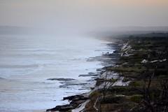 sea eats land (dustaway) Tags: coast sand australia nsw australianlandscape sanddunes lateafternoon northcoast coralsea southpacificocean coastallandscape broadwaternationalpark