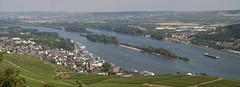The Rhine (Rich3012) Tags: panorama river germany deutschland vineyards rhine rdesheim hesse bingen
