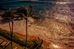 """The brochure said """"Absolute beachfront!"""" - fair call. (dmunro100) Tags: ocean sea summer beach island hawaii maui resort kaanapali"""