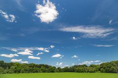 marl bed july 2016-5 (John Hudson Photo) Tags: lake clouds canon reflections landscape michigan bluesky scotts circularpolarizer 6d greengrass 24105 canon6d