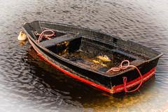 Barca (Jess Vegue) Tags: lomond reinounido lagos europa escocia stronachlachar gb