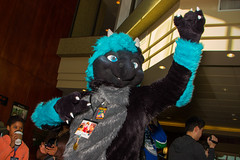 VF 2015 Day 3 Card 5 116sfx (Univaded Fox) Tags: canada hotel furry columbia parade convention burnaby british executive fursuit 2015 fursuits darkk vancoufur univaded