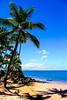 Maui Snapshots (alliance1) Tags: ocean morning color beach hawaii maui palmtrees kihei 2015 anotherone fujifilmxt1
