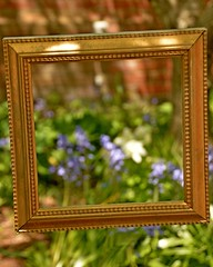 through the looking glass (armykat) Tags: gardens bokeh richmond frame pictureframe emptyframe lewisginterbotanicalgarden natureycrap henricovirginia virginiaisfornatureycrap