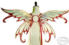 Iynx No.6 Medium Fairy Wings (RSDixonArt) Tags: halloween glitter butterfly costume wings cosplay magic fairy fantasy masquerade wearableart cellophane fairywings