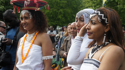I HAD A WONDERFUL DAY AT AFRICA DAY 2015 [FARMLEIGH HOUSE IN PHOENIX PARK]-104541
