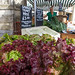 Glastonbury Farmers Market 2015