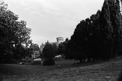 Qualcuno , in qualche luogo in Toscana. (michele.palombi) Tags: camera toscana oscura pellicola