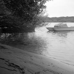 . (http://fotocelluloide.tumblr.com) Tags: sea bw 120 6x6 del river square fiume delta bn po rodinal lido pedalo rolleicord foma shneider lidovolano