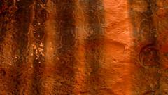 Tiger Stripes (Dru!) Tags: orange usa black wall utah ut sandstone desert stripes stripe canyon lichen redrock striped stripy varnish utahtrip coloradoplateau desertvarnish waterstreak