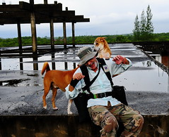 ,,  Mugged By A Pumpkin ,, ,, (Jon in Thailand) Tags: street roof dog playing man reflection dogs puppy pumpkin fun happy nikon jon asia photographer rocky oldman longneck jungle monsoon nikkor hooligans k9 mugged d300 booniehat hooliganism 175528 thinktankbeltsystem abandonedabusedstreetdogs streetphotographyjunglestyle littledoglaughedstories thedogpalace bosstrap